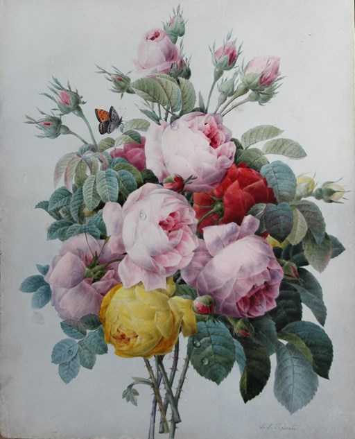 Pierre-Joseph Redouté (1759-1840), the 'Raphael of flowers'