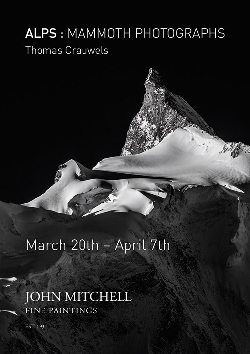Current exhibition ALPS: MAMMOTH PHOTOGRAPHS by Thomas Crauwels